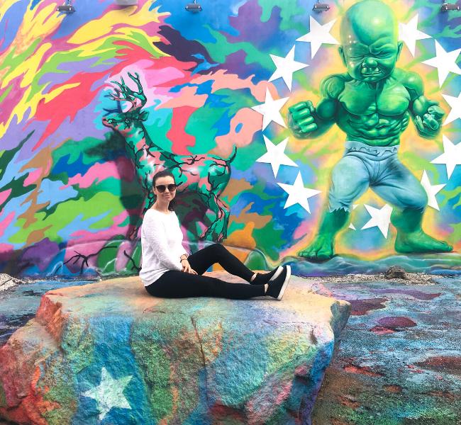 Miami, atrações, compras, Wynwood, Florida, Estados Unidos, EUA, arte de rua