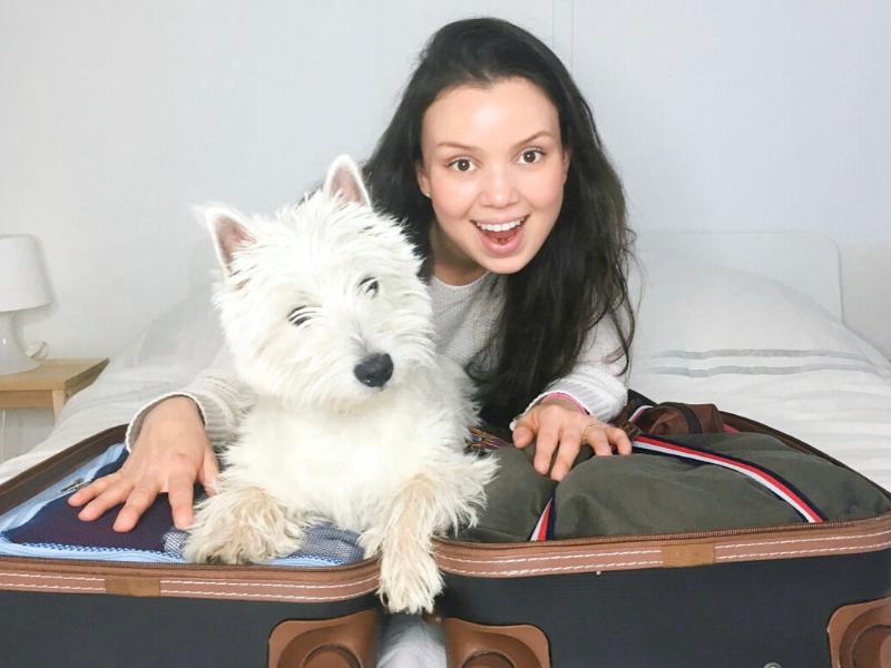 bagagem, mala de mão, mala despachada, mala extra, regras de bagagem, viagem econômica